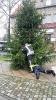 Weihnachtsbaumstellen der FFW_2