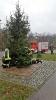 Weihnachtsbaumstellen der FFW_4